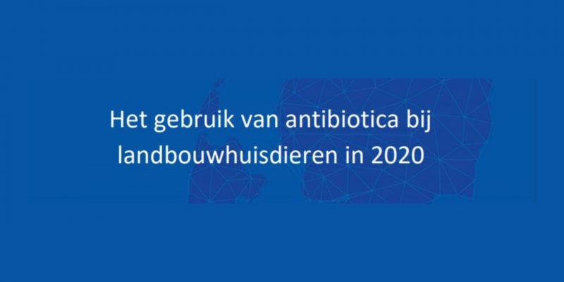 Antibioticagebruik bij landbouwhuisdieren